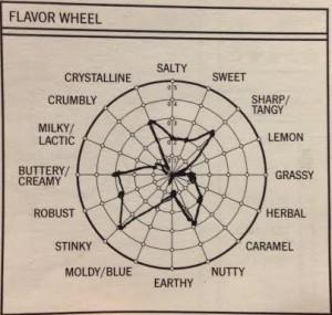 Sophia's Flavor Wheel